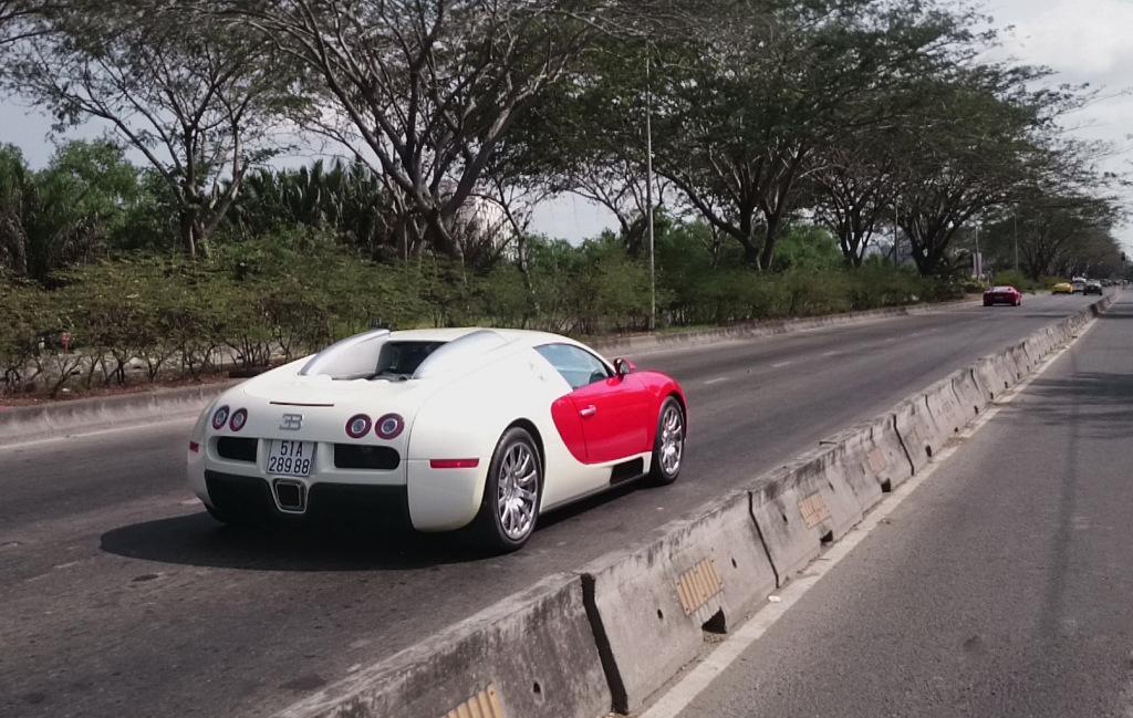 bugatti-veyron (6)
