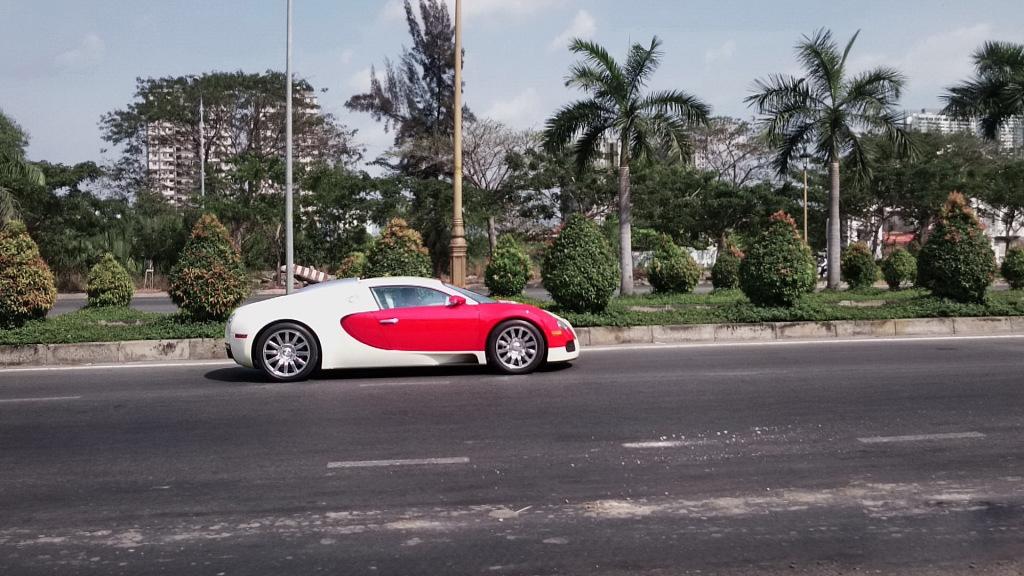 bugatti-veyron (9)